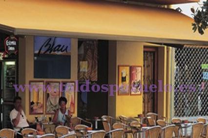 TTOLDO EXTENSIBLE MONOBLOC ART 500 | TOLDOS POZUELO